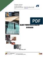 COGESTION en ALCASA Balance y Perspectiva de La Cogestion Revisado