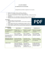 Analytic and Holistic Rubric