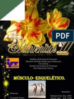 Diapositivas de Fracturas Con Caso Clinico Mejorada Copia(1)