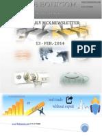 Daily Mcx Newsletter 13 Feb 2014