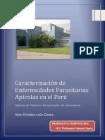 Informe Vacacional LAboratorio