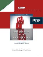 ERM - Understanding Communicating Risk Appetite-WEB_FINAL_r9