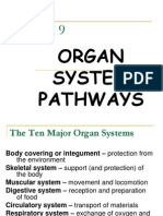 organ systemgfkhfg nat sci2.ppt