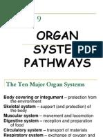 organ systemgfkhfg nat sci2.ppt