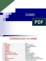 DAMS1
