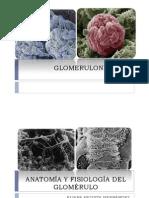 GLOMERULONEFRITIS ucc