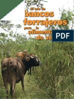 Forraje Ganado Lechero (Leucaena-Madero Negro-Marango)