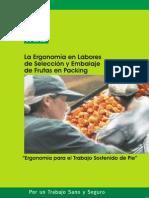 Ergonomía en labores de selección y embalaje de frutas en packing.pdf