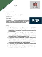 Concepto  Hurto Continuado Penal Lina Maria  Del Risco Chadid Versión Final