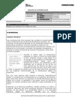 SESIÓN DE APRENDIZAJE CAMBIOS CLIMATICOS 24-10-2013