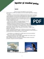 Mediul polar si subpolar