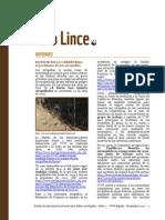 Lince Online Newsletter 1 Noviembre13 (1)