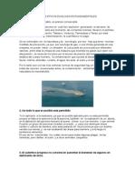 1108_4_1_principios_eticos_ecologicos[1]
