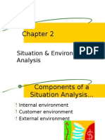Situation & Environmental Analysis