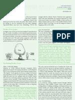 Serengeti Advisers - Media Report August 2009