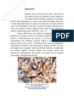 Aula_1 Arte Cultura Visual Ed. Relacoes