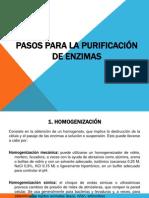 Purificacion_actividad_1
