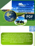 Bioseguridad de Organismos Geneticamente Modificados
