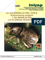 El Barrenillo Del Chile Anthonomus Eugenii y Su Manejo en La Planicie Huasteca