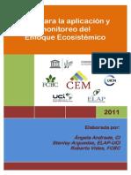 Guia Para Implementar y Monitorear El EE 2011