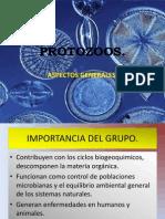 Generalidades de Los Protozoarios DR
