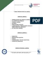 temaprepas_laboral_penal_priv1.doc