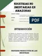 Industrias No Alimentarias en Amazonas 2