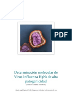 Virus Influenza (H5N1) de Alta Patogenicidad
