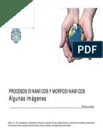 005-2013-pp-6b-dinamymorfodinam-130905212927-