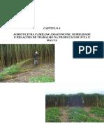 2 agricultura familiar amazonense mobilidade e relações de trabalho na produção de juta e malva