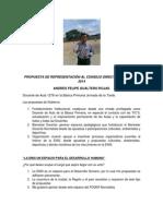 PROPUESTA DE REPRESENTACIÓN AL CONSEJO DIRECTIVO DE LA ENSI 2014