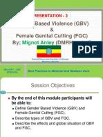 P -3- Gender Based Violence (GBV) -2013