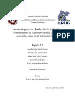 Avance de Proyecto IBR