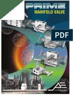 Manifold Valve