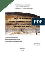 Rezumat Doc Petru Ignat UB Geografie 2012