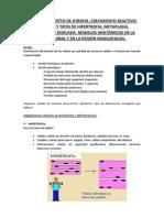 TEMA 13 AP.docx