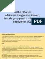 1013 Testul Raven 2f