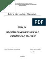 Circuitele Biogeochimice Ale Fosforului Si Sulfului