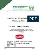 Modernizarea fluxului tehnologic in scopul cresterii capacitatii de productie, in cadrul firmei SC Industrializarea carnii (KOSAROM) SA