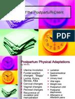 Postpartum 08