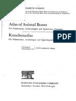 Schmid 1972 - Atlas of Animal Bones