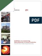 Guideline Coprocem v06-06