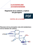 Regulacion Sint y Degradac Glucogeno Glicemia [Recupera