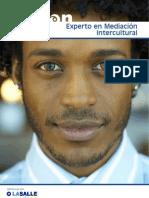 Curso de Experto Mediacion Intercultural