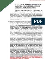 Propuesta a la Confedración Argentina de la Mediana Empresa (C.A.M.E) para la provisión de gas en el NEA