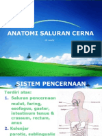 Anatomi Saluran Cerna EDIT 1