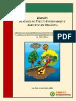 Metodologia Carbono