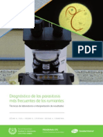 Manual Diagnostico Final
