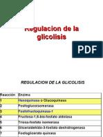 regulacion de la glicolisis