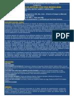 Curso Deflexiones Elasticas Viga Benkelman 2013 (1)